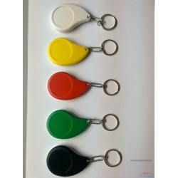 Mango Key Chain